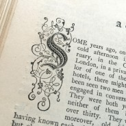 Shelf Life – Godey's Lady's Book, June 1889